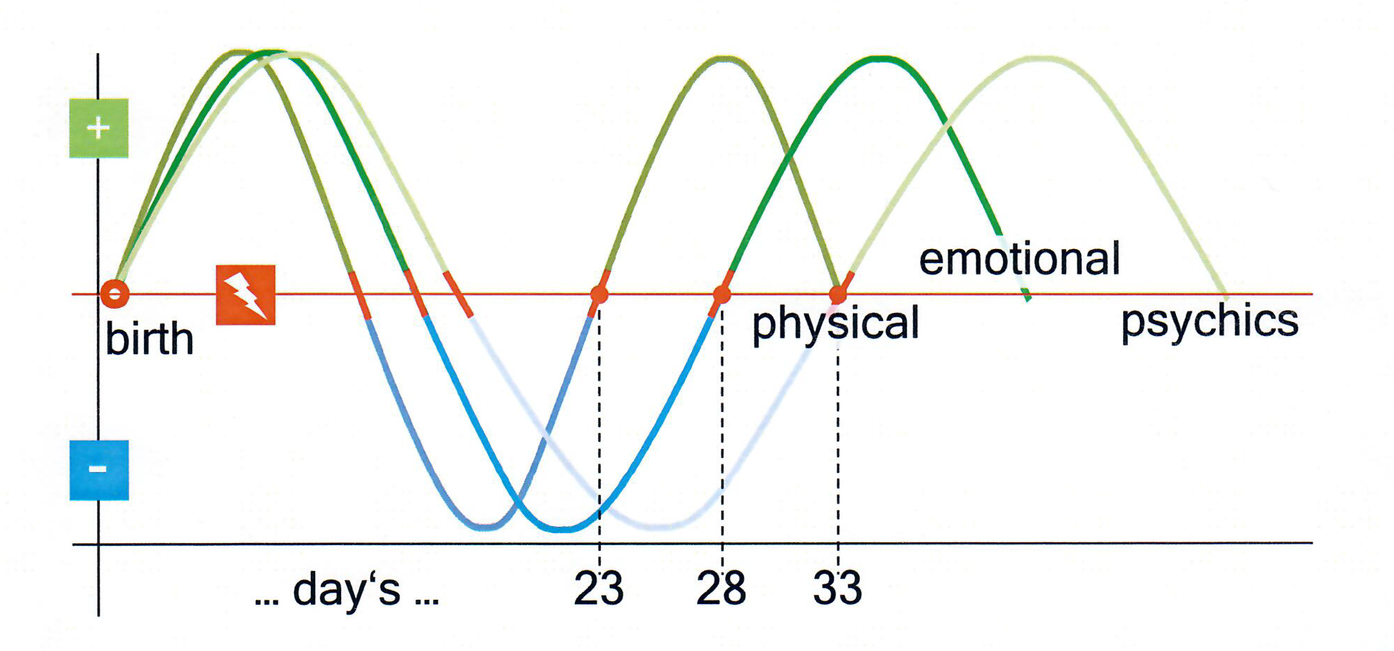 Biorhythm Wave